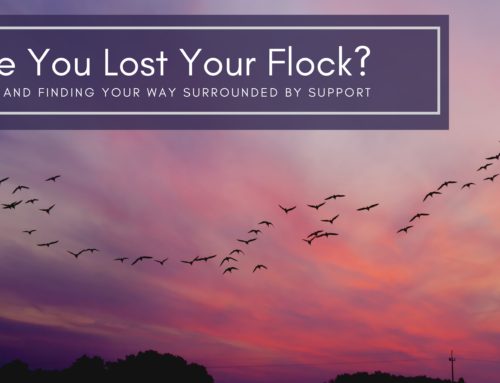 Have you lost your flock? Finding support after divorce.